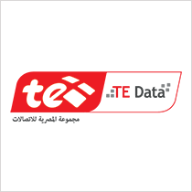 TE DATA Logo
